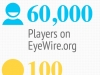 EyeWire Player Stats