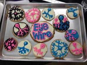 neuron cookies, awesome cookies, geeky, neurons, EyeWire, science, cooking, cute