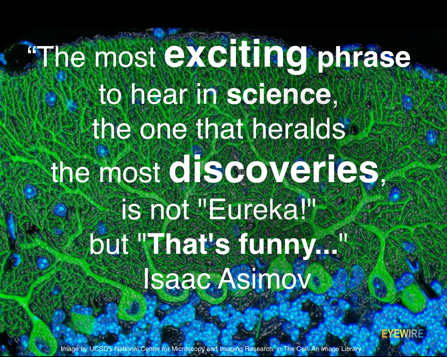 Index Of Wp Content Uploads 2013 01 Clipart Search Results For Quotcircuitquot Great Quotes By Eyewire