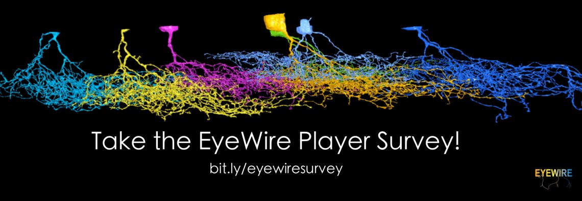 EyeWire Player Survey