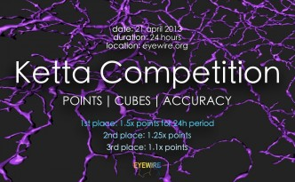 Ketta Competition EyeWire