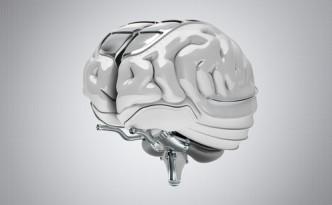 concept brain art