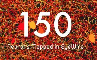 eyewire neurons 150