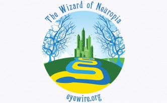 EyeWire WIzard of Neuropia, wizard of oz, Oz, flat design, landscape, eyewire, citizen science, science design