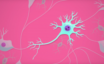 a cute neuron crashcourse