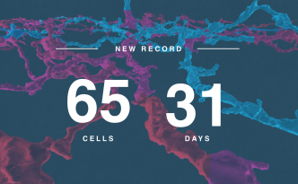 eyewire monthly cell record, eyewire, citizen science, neuron record, 65 cells, eyewire record